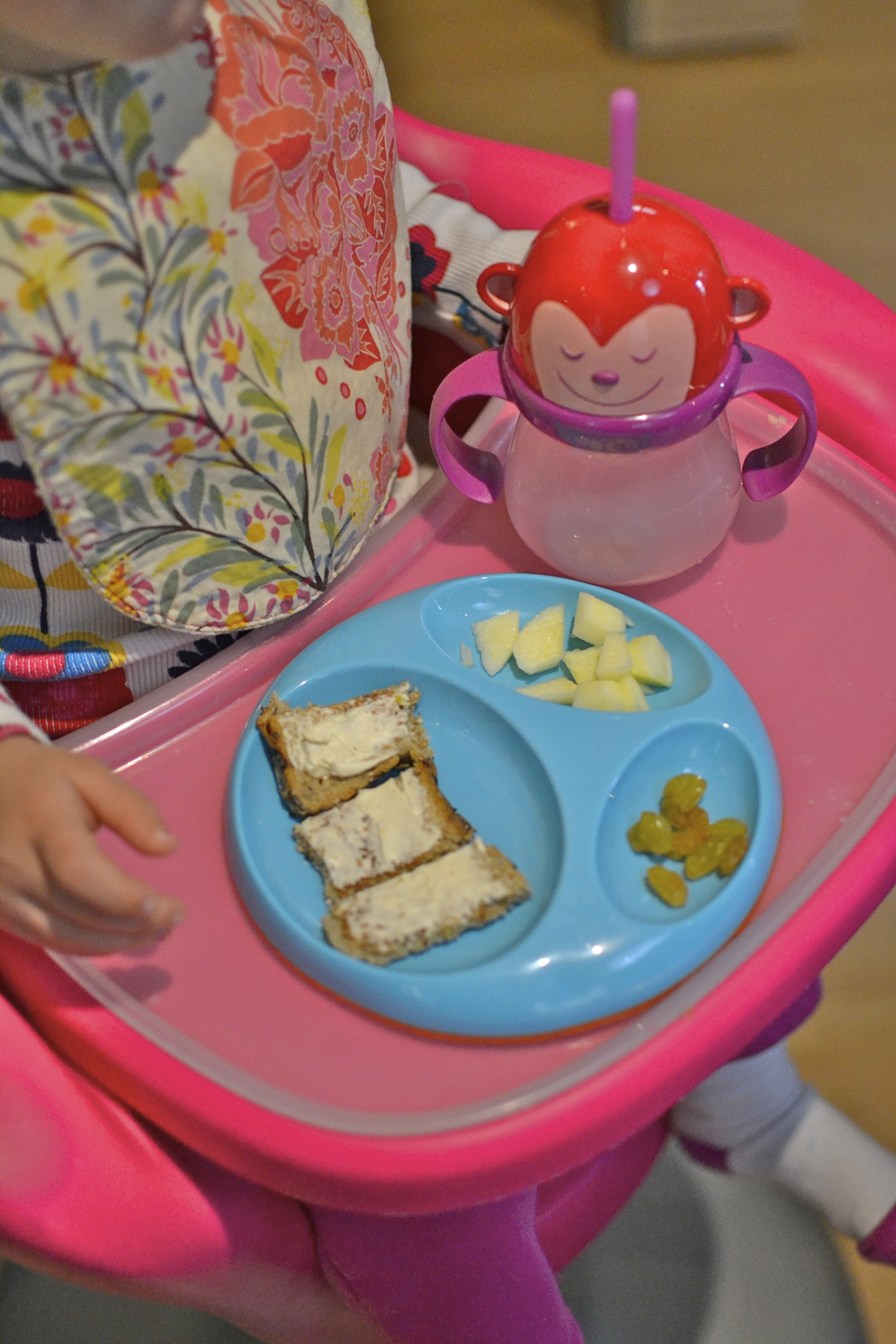 toddler lunch: toasted seedy bread, laughing cow cheese, apples and golden raisons...a current favorite