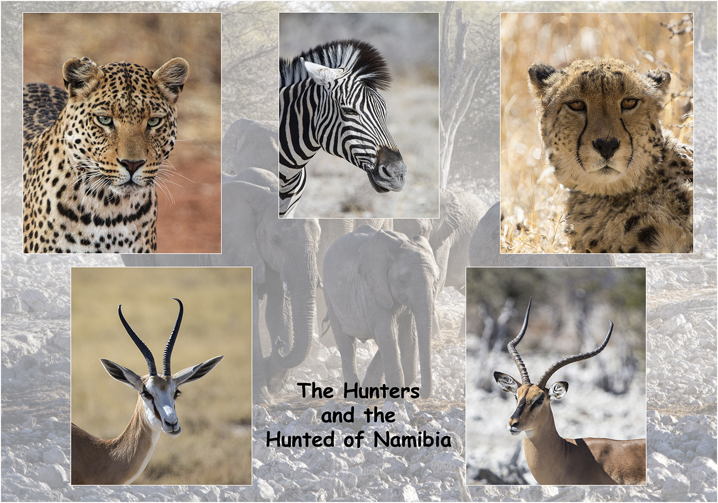 """The Hunters and the Hunted"" by Robin Couchman"