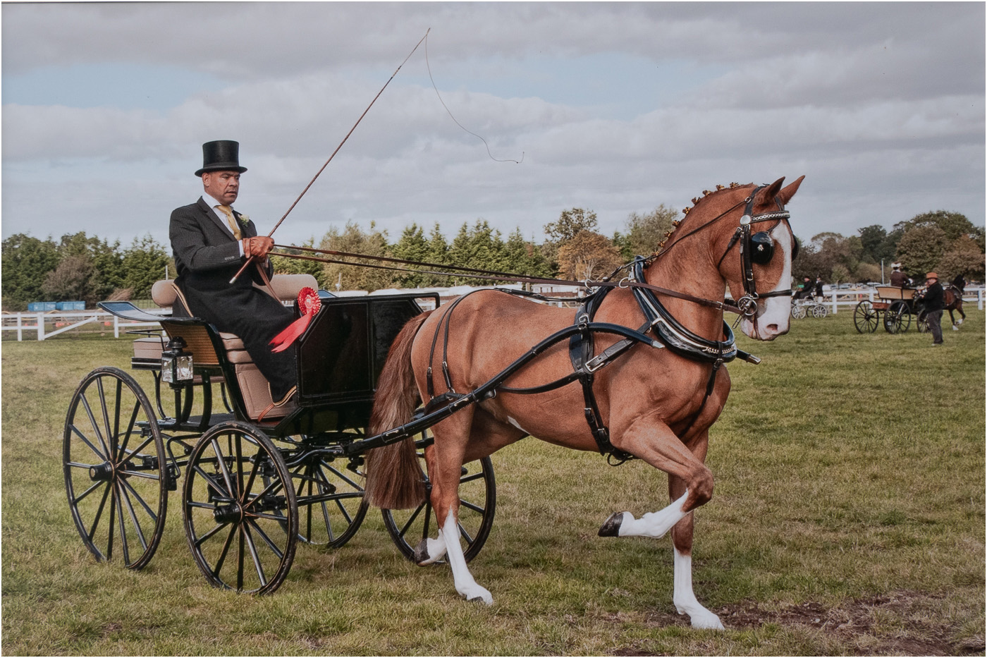 The Carriage Driving Competition.jpg