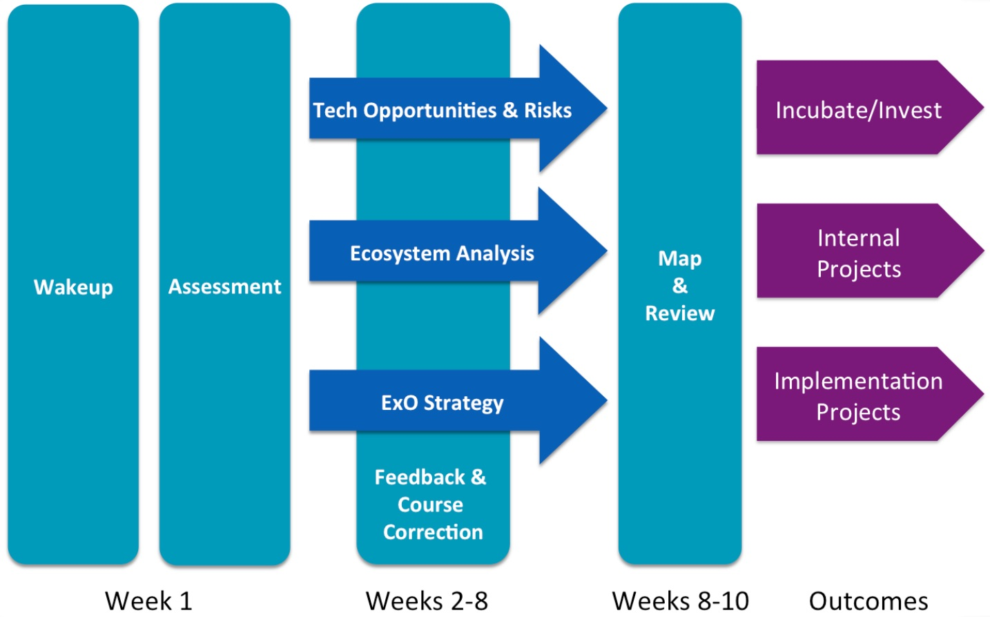 Fig 1. - Typical ExO Sprint Structural Framework