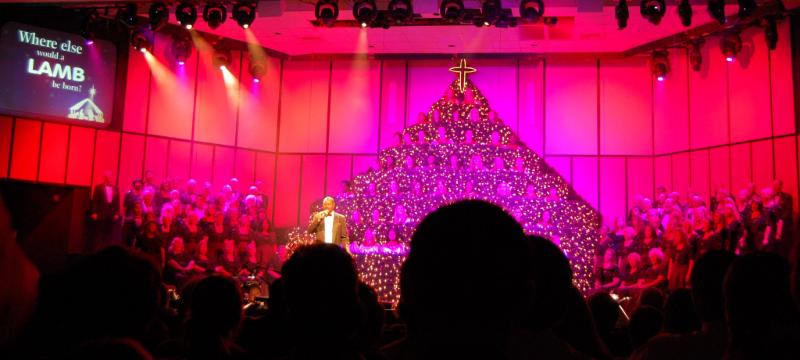 """""""Living Christmas Tree"""""""