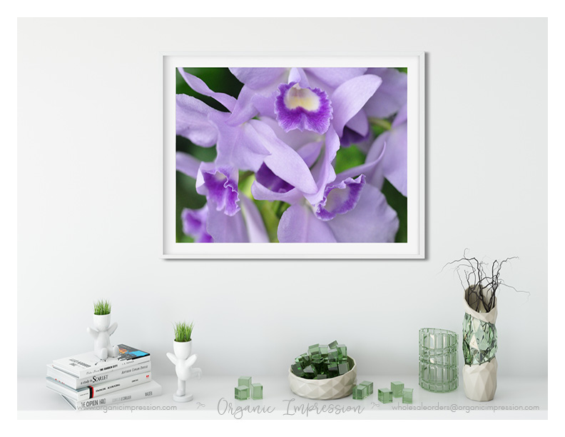 purple orchid green vases indesign copy.jpg