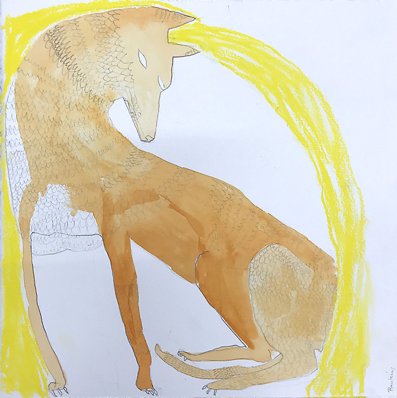 Dingo With Yellow  2017 Graphite, gouache and charcoal on paper 30 x 30cm