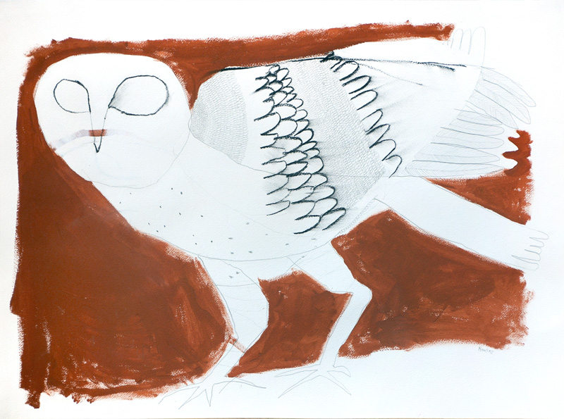 Grass owl  2016 Graphite, gouache, charcoal on paper 56 x 76cm