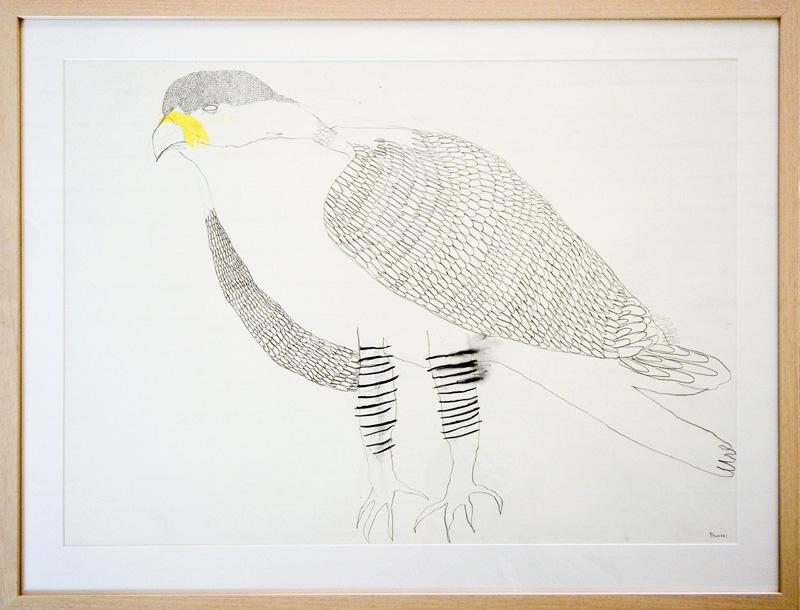 Falcon  2015 Graphite, gouache, charcoal on paper 56 x 76cm
