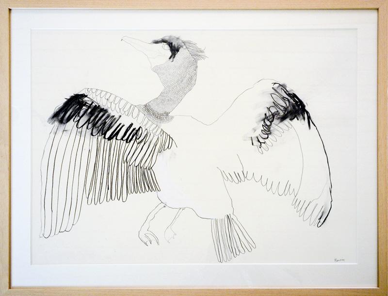 Cormorant  2015 Graphite, gouache, charcoal on paper 56 x 76cm