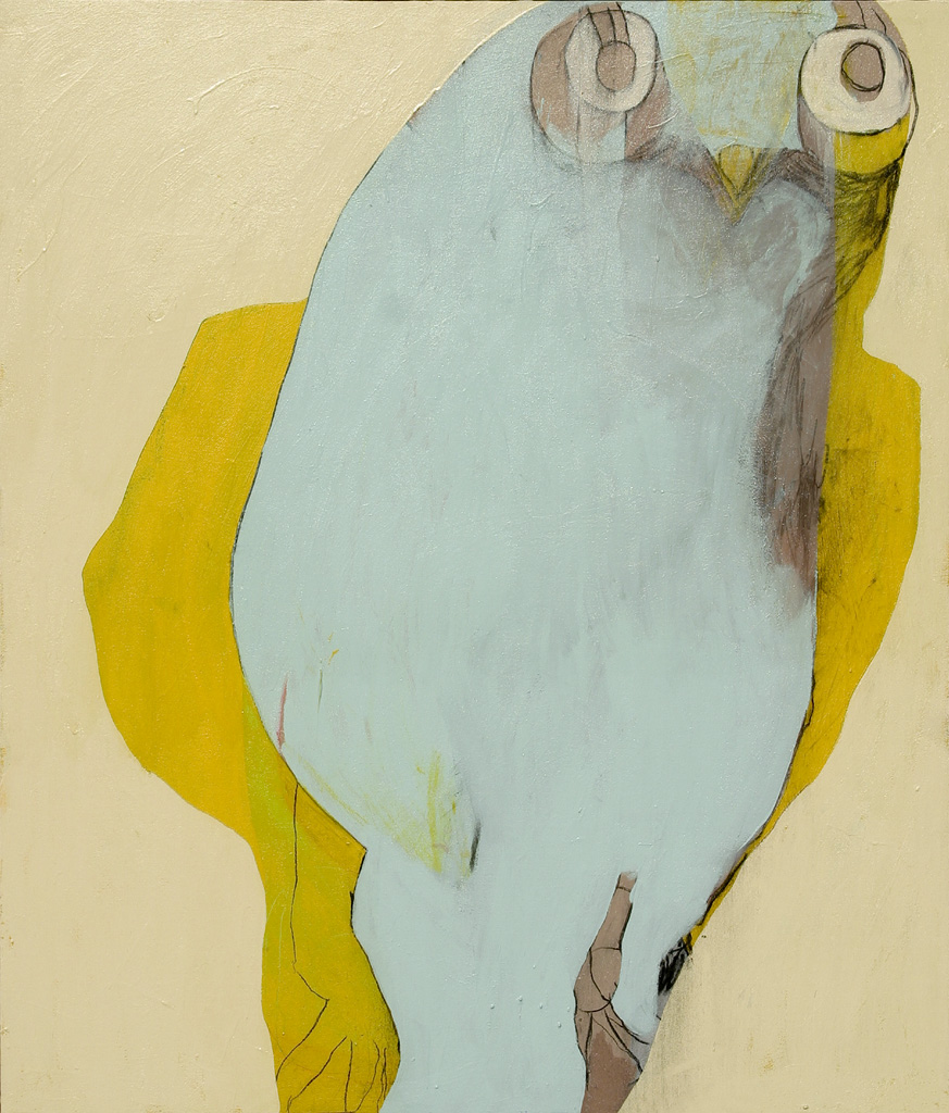 Yellow Breasted Owl  2006 Acrylic and charcoal on cotton canvas 140 x 120cm