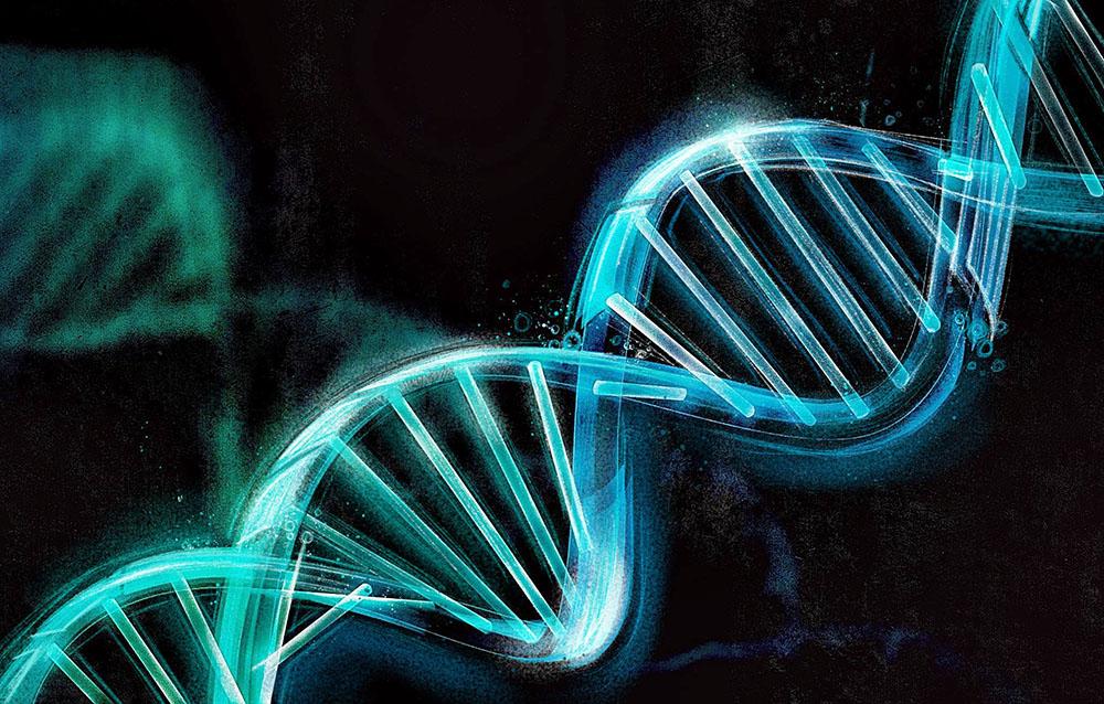 Khan - DNA1_behance.jpg