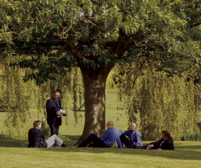 Tree-Meeting-Brooking.jpg