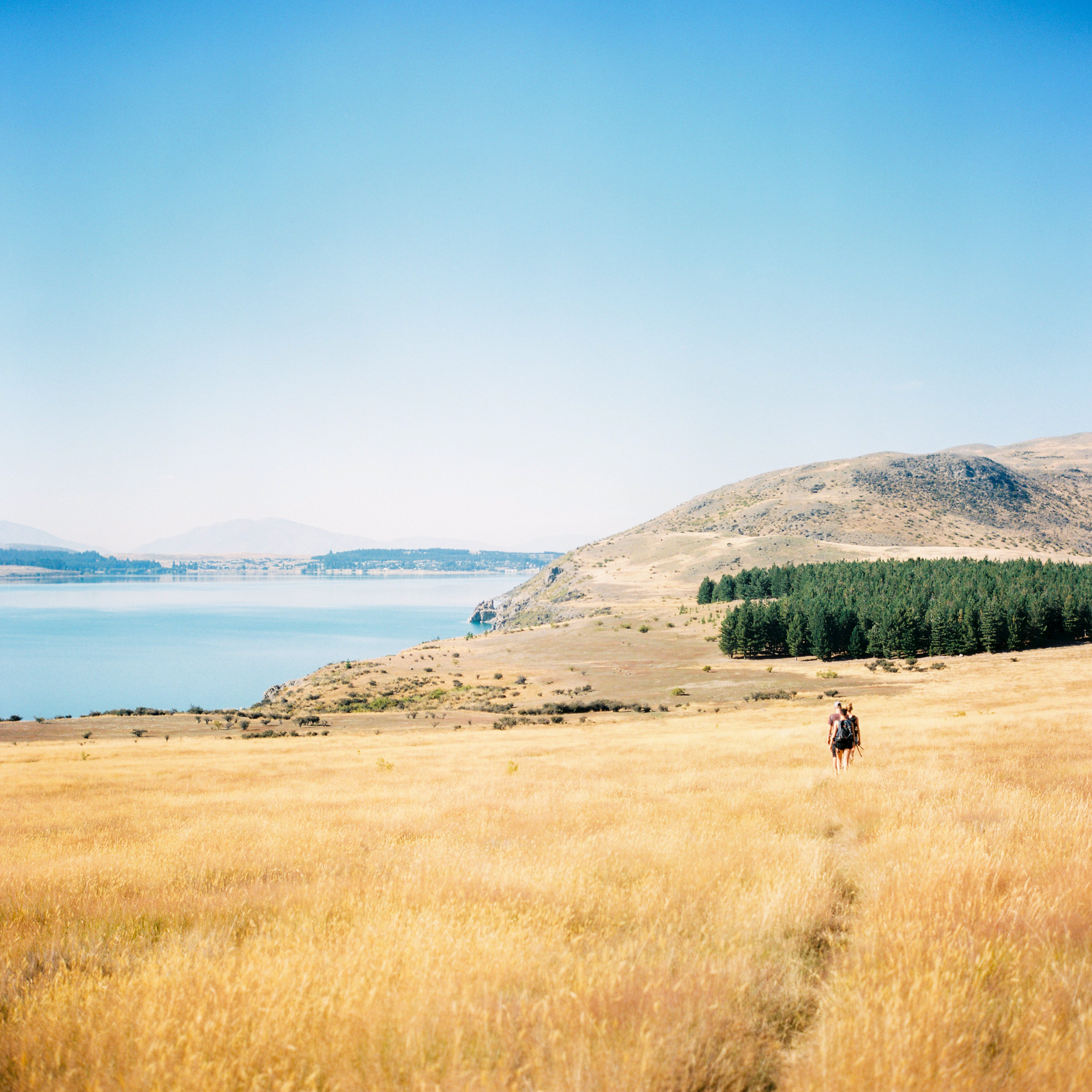 See in Neuseeland