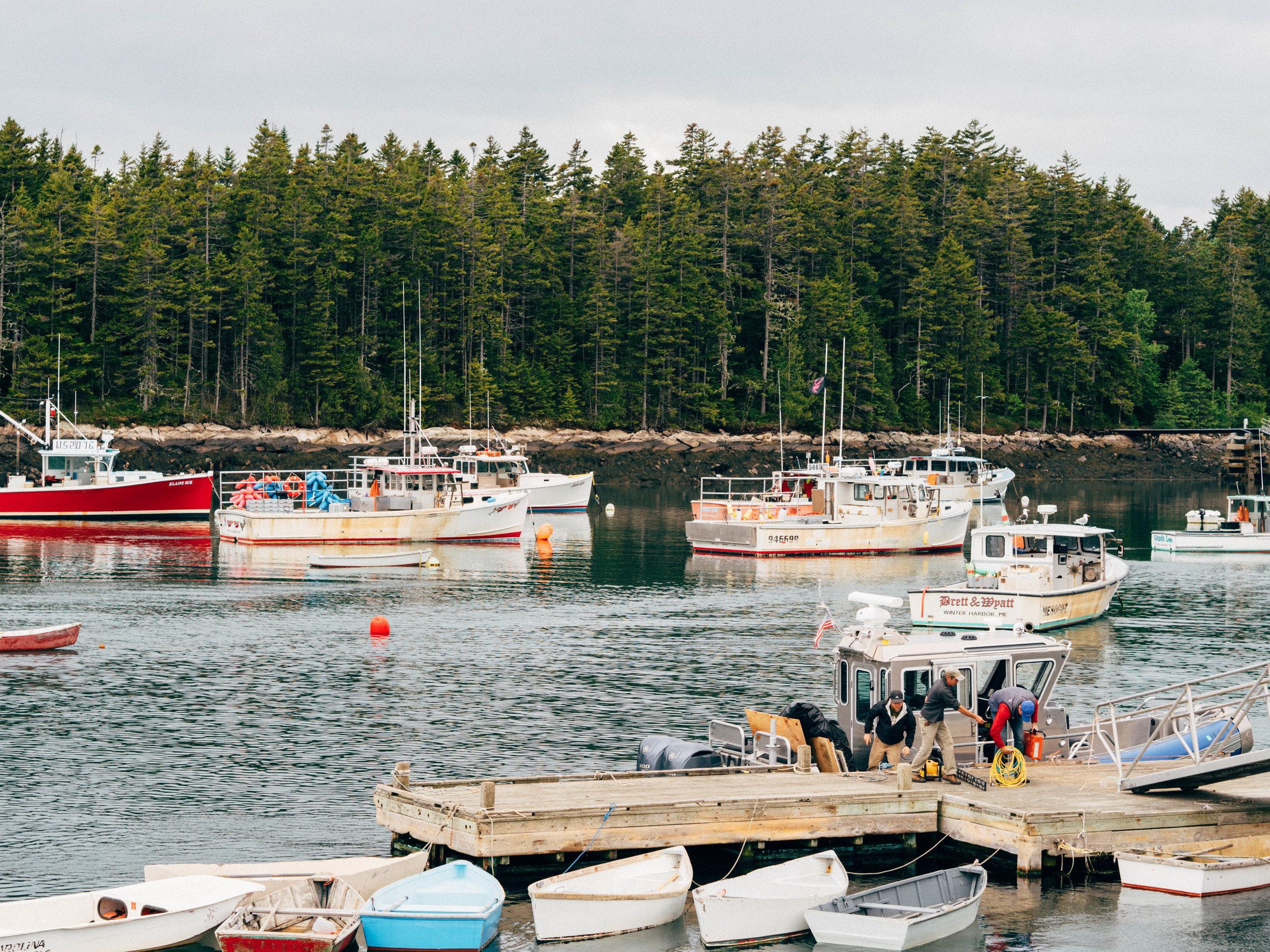 Maine061416_82.jpg