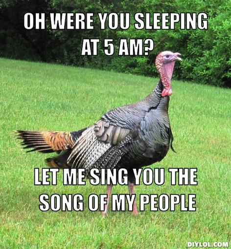 For all those feeling bad about eating a metric ton of turkey tomorrow..