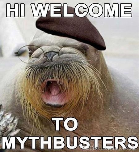 img-1442209-1-Mythbusters-meme-joke-funny-lol_thumb.jpg