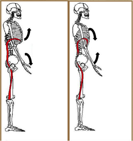 Extension on the left, flexion on the right.