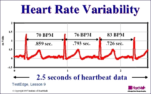 HRV is one of the best measures of an increase in cardiovascular fitness. #restanddigest