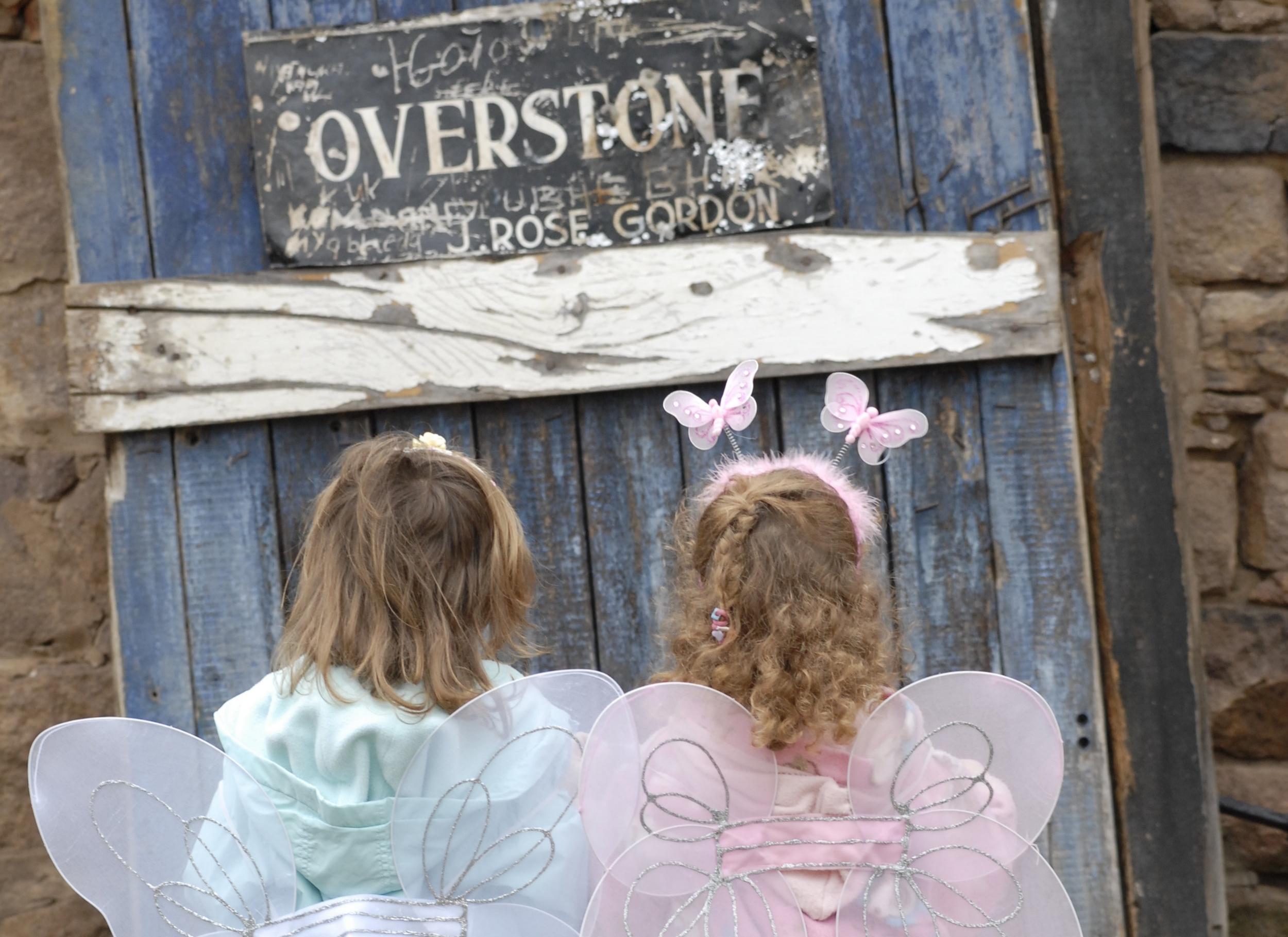 Fairies and Overstone door A1 Portrait.JPG