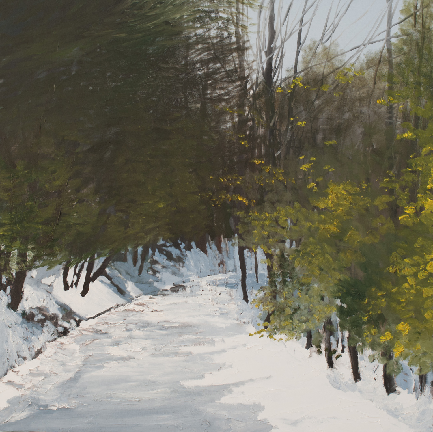Winter Paths 2014 - Present