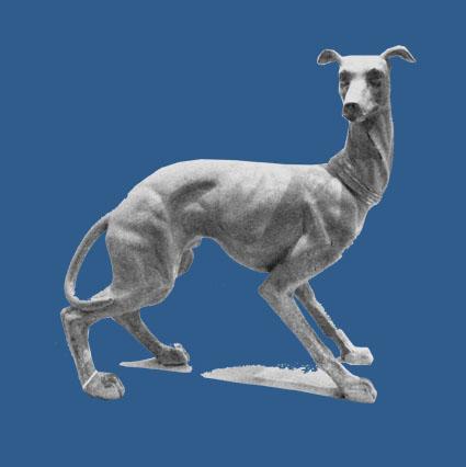 greyhound invites 6.jpg