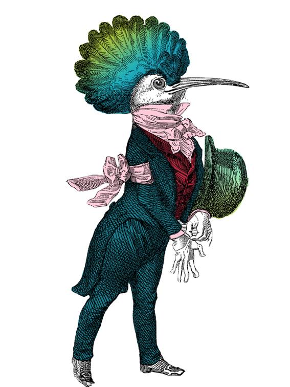 Aristocratic dandy bird illustration  © styleART design studio