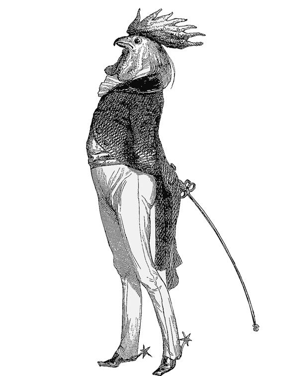 Cockerell in smart uniform illustration  © styleART design studio