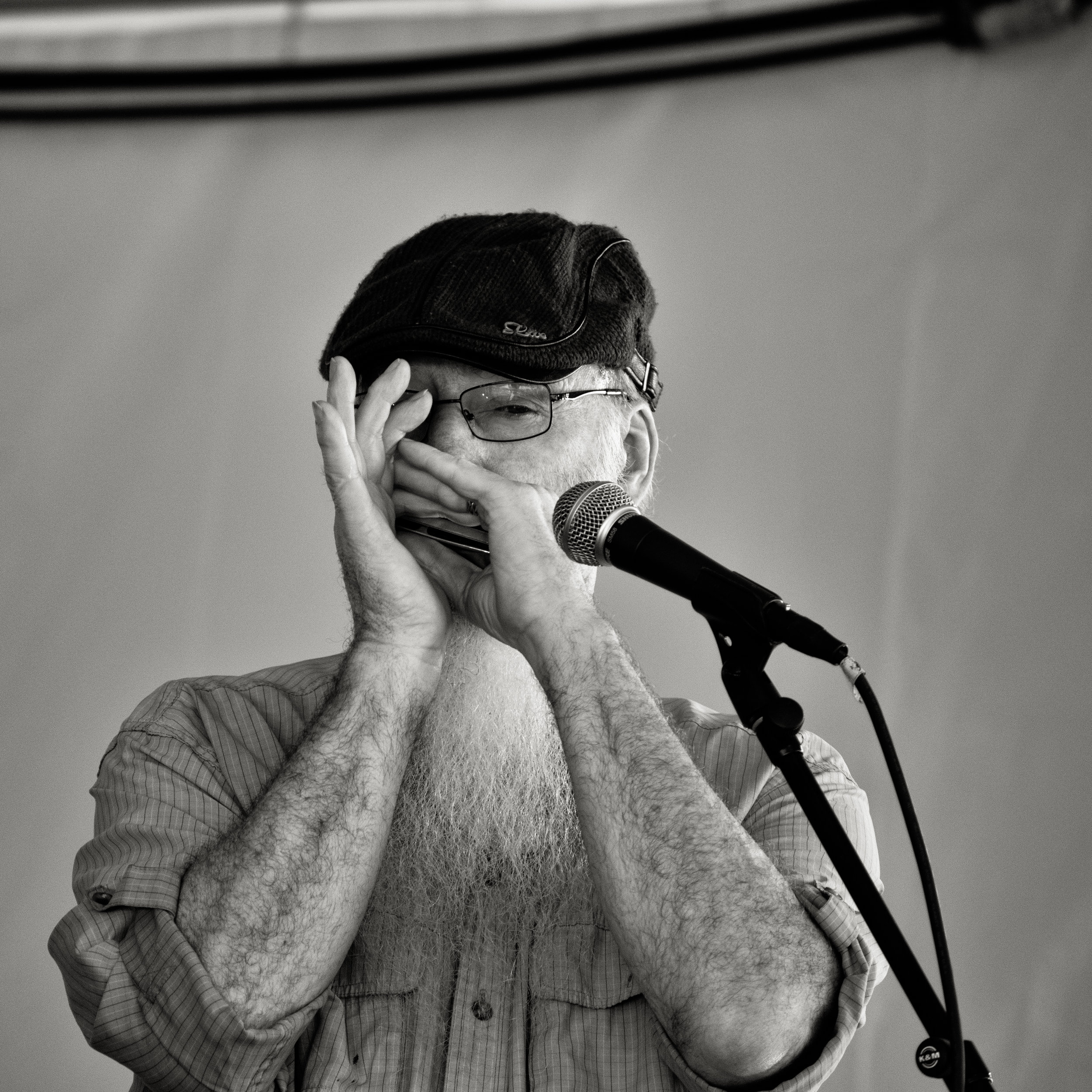 Harmonica guy performing at the fair