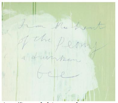 Detalhe 1 ,   Untitled (Peony Blossom Paintings).