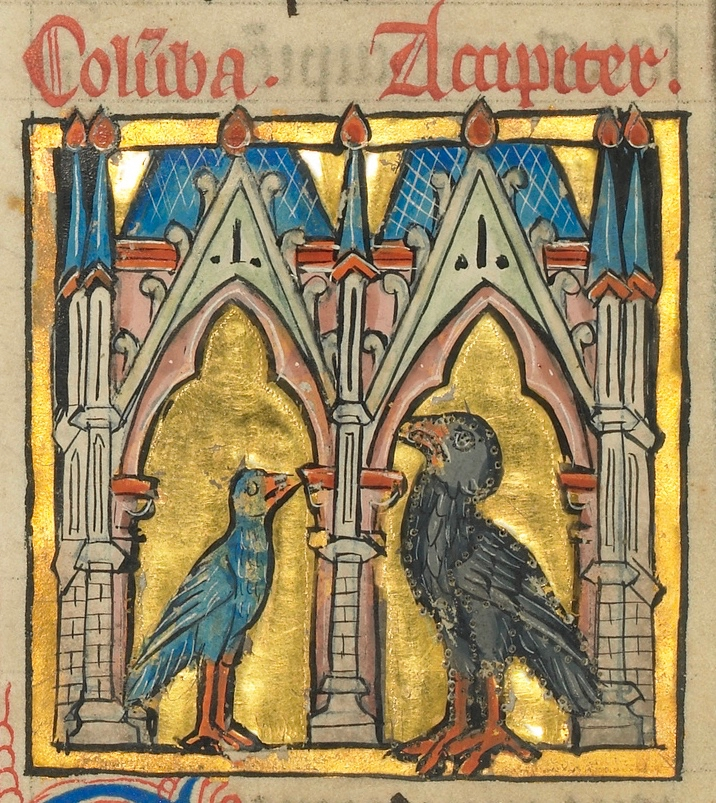 Uma pomba e um falcão (detalhe), Ms. Ludwig XV 4 (França, último quartel do século XIII), fol. 1v. The J. Paul Getty Museum, Los Angeles