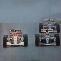 Senna5.jpg