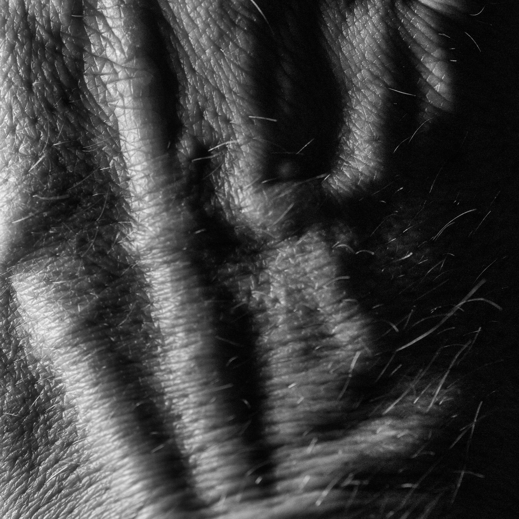 Hand23-106.jpg