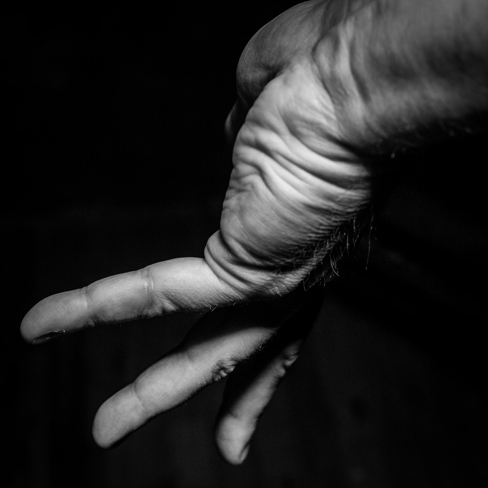 Hand29-100.jpg