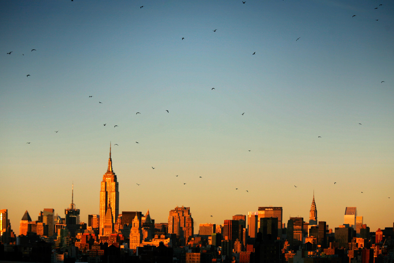 NYC_MG_0604.jpg