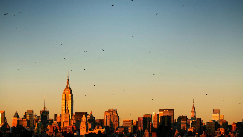 NYC - USA