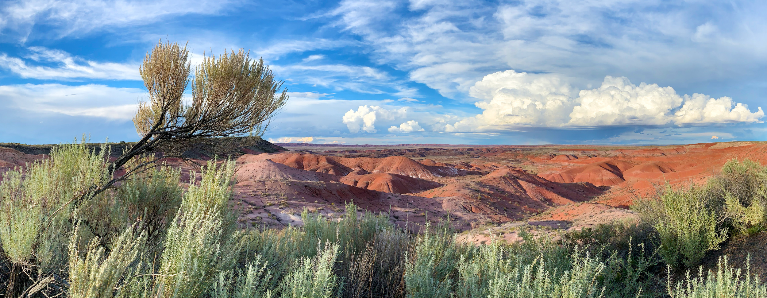 Shot on iPhone XR in Pano Mode w/ Smart HDR. Petrified Forest National Park.