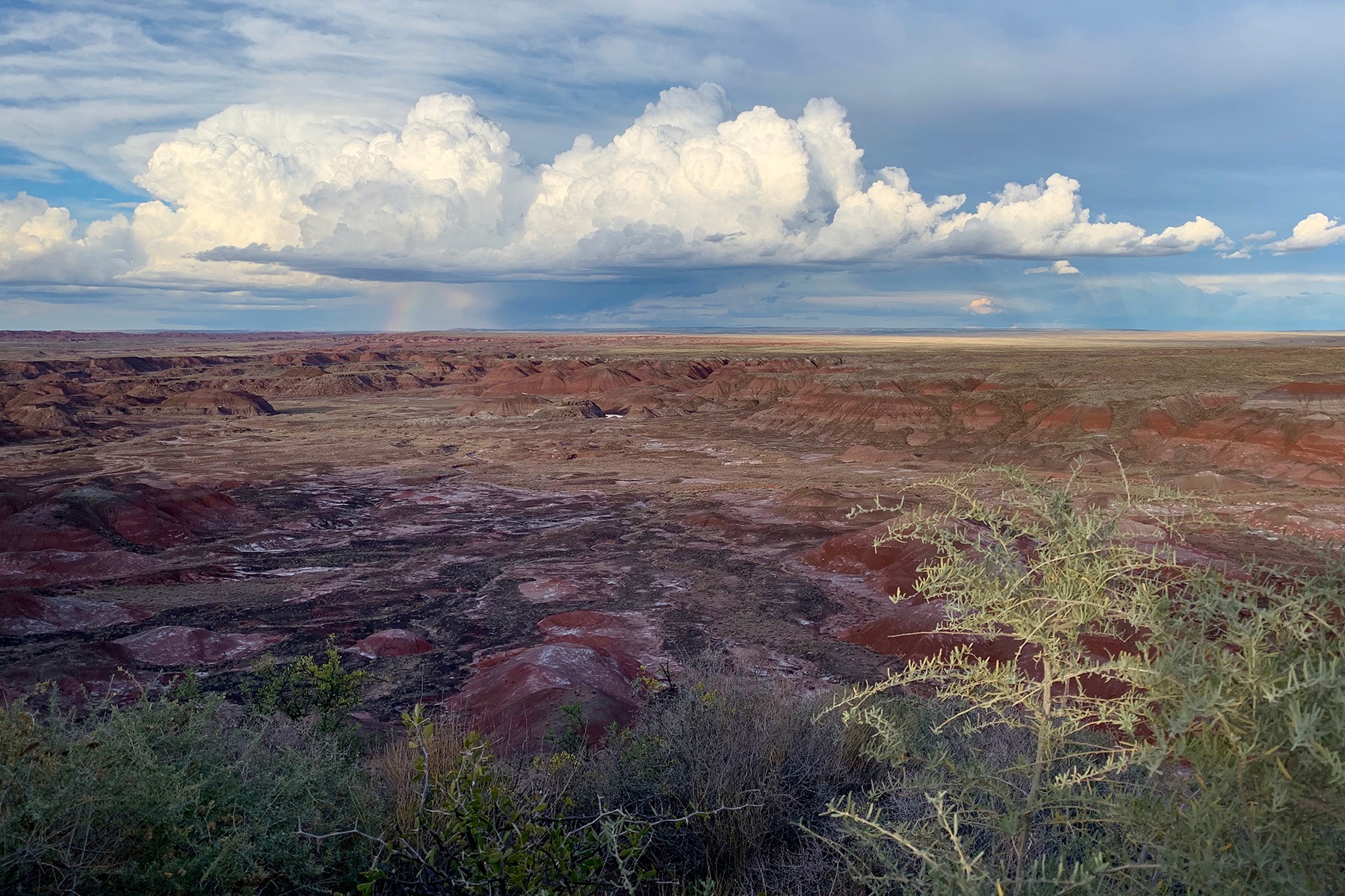 Shot on iPhone XR w/ Smart HDR at Petrified Forest National Park.