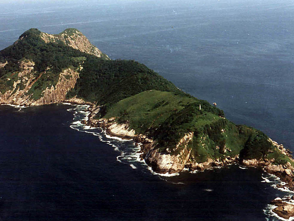 Snake Island from above — nobody's crazy enough to get any closer! (  source  )