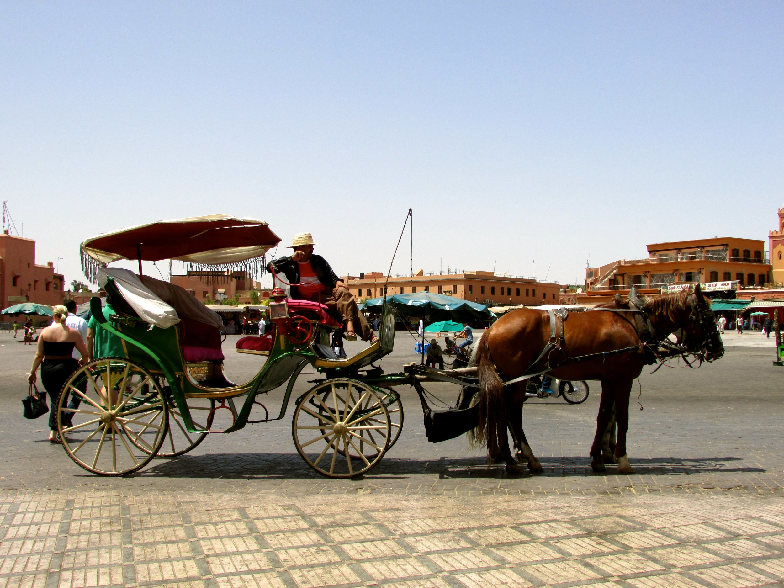 Horse drawn carriage for rent in Marrakech, Morocco