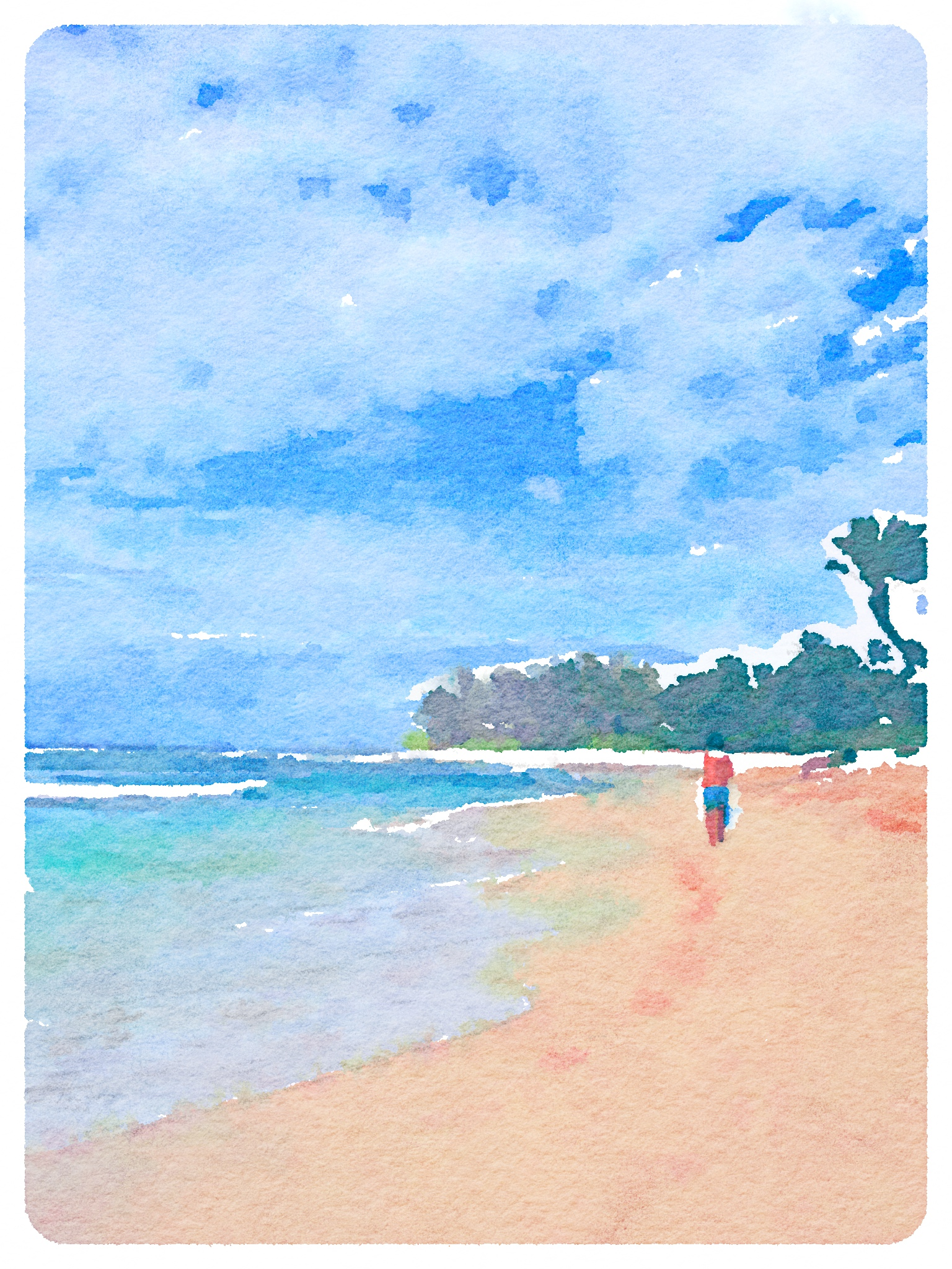 Beautiful beach in Hawaii Art Print