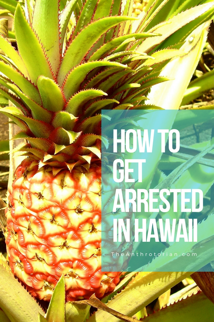 How to get arrested in Hawaii