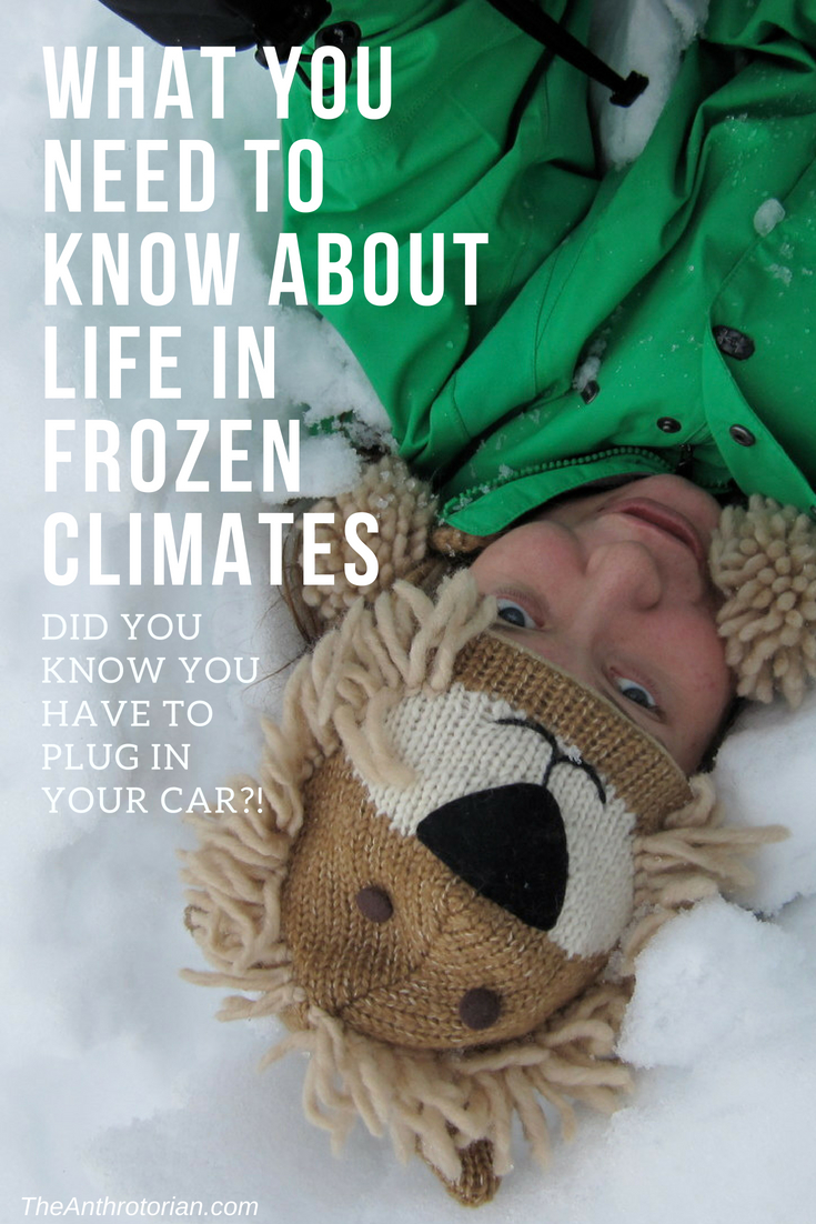 What you need to know about life in frozen climates