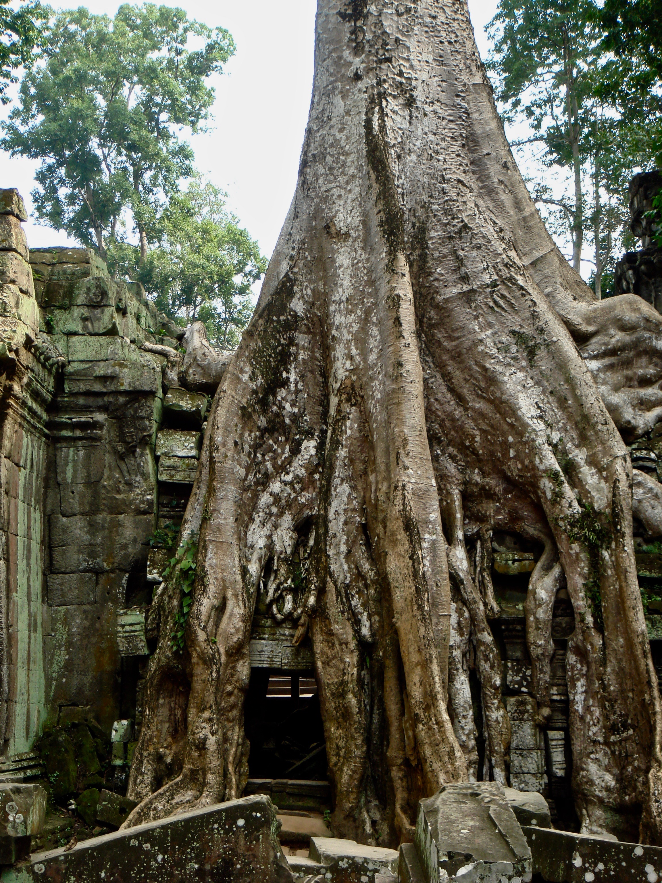 Angkor Temples in Cambodia