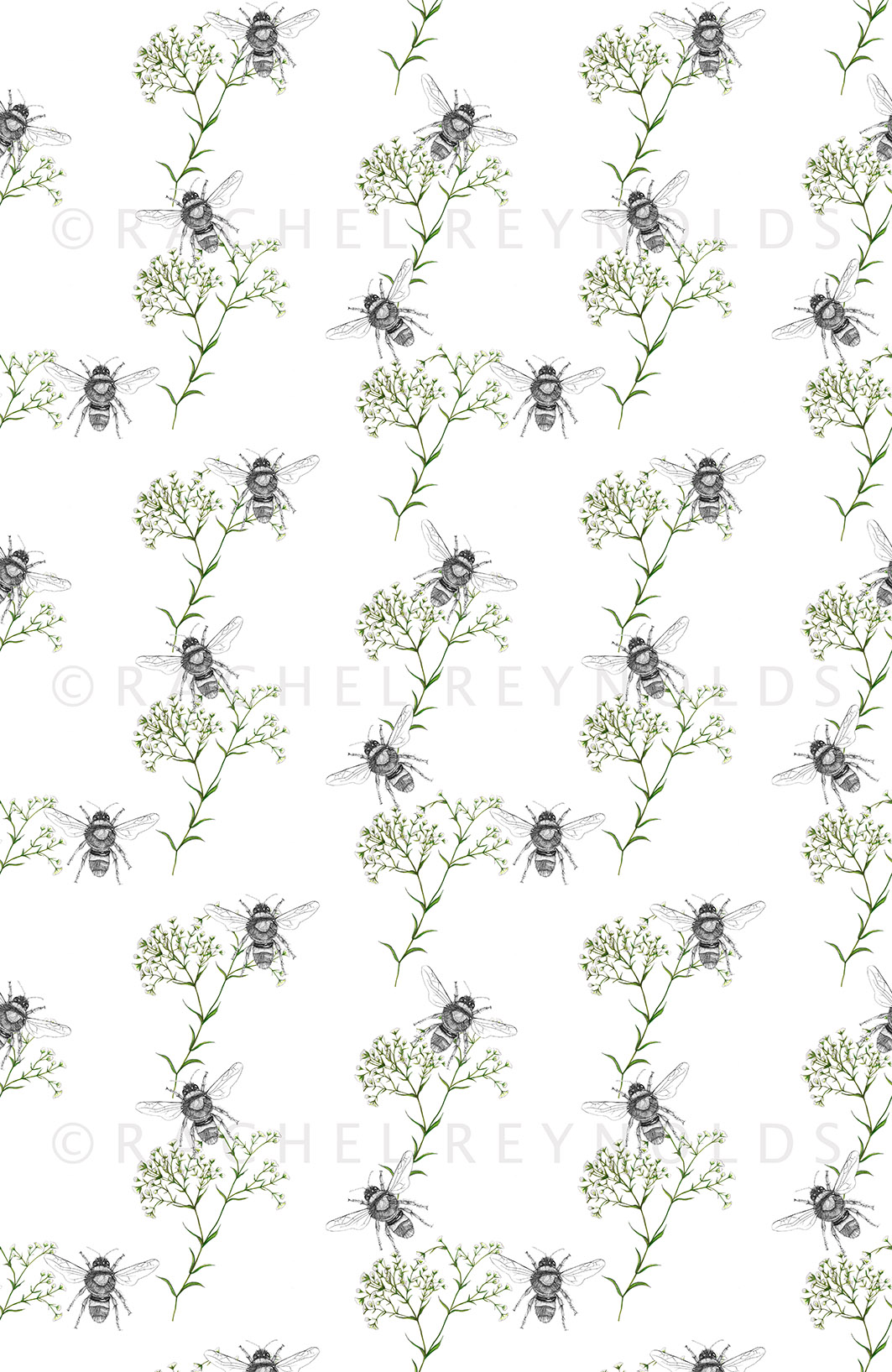 Bee & Gypsophilia White Wallpaper