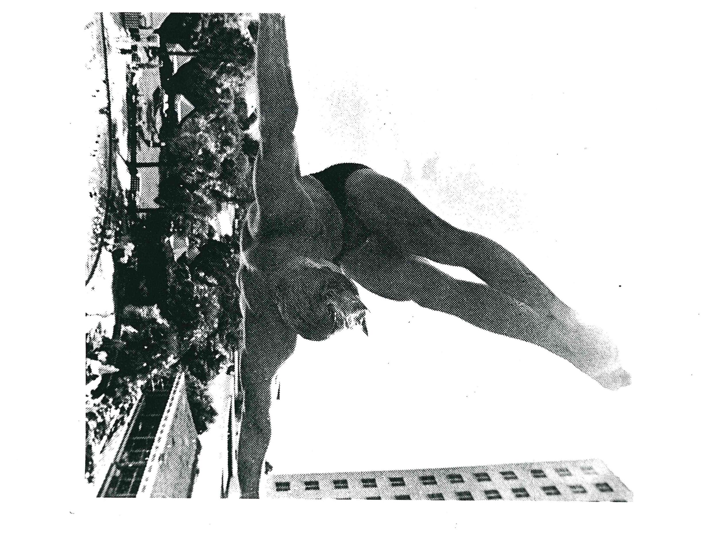 Tom Neyland diving photo.jpg