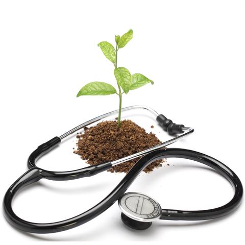 naturopathic medicine.jpg