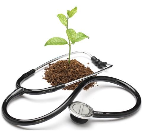 naturopathic+medicine.jpg