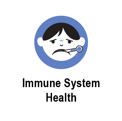 immune system.png
