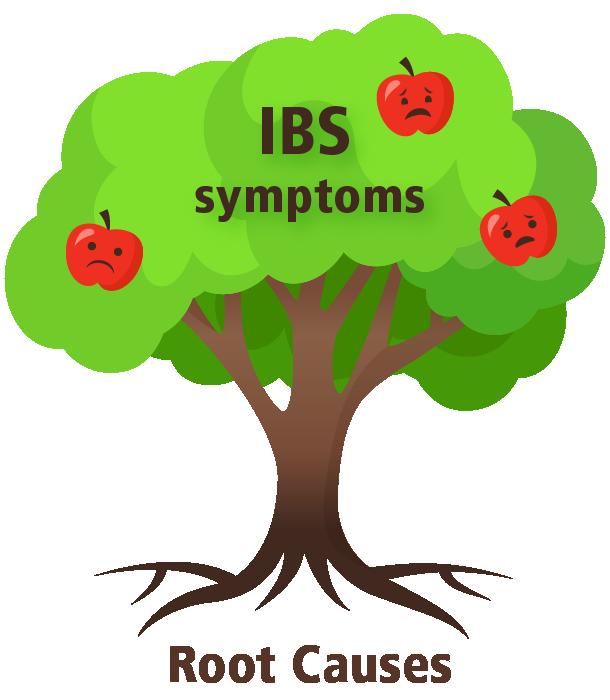 IBS-Tree_610.png