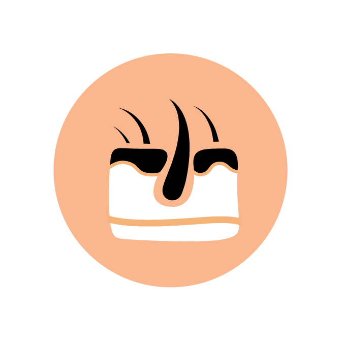 skin side icon (small).png