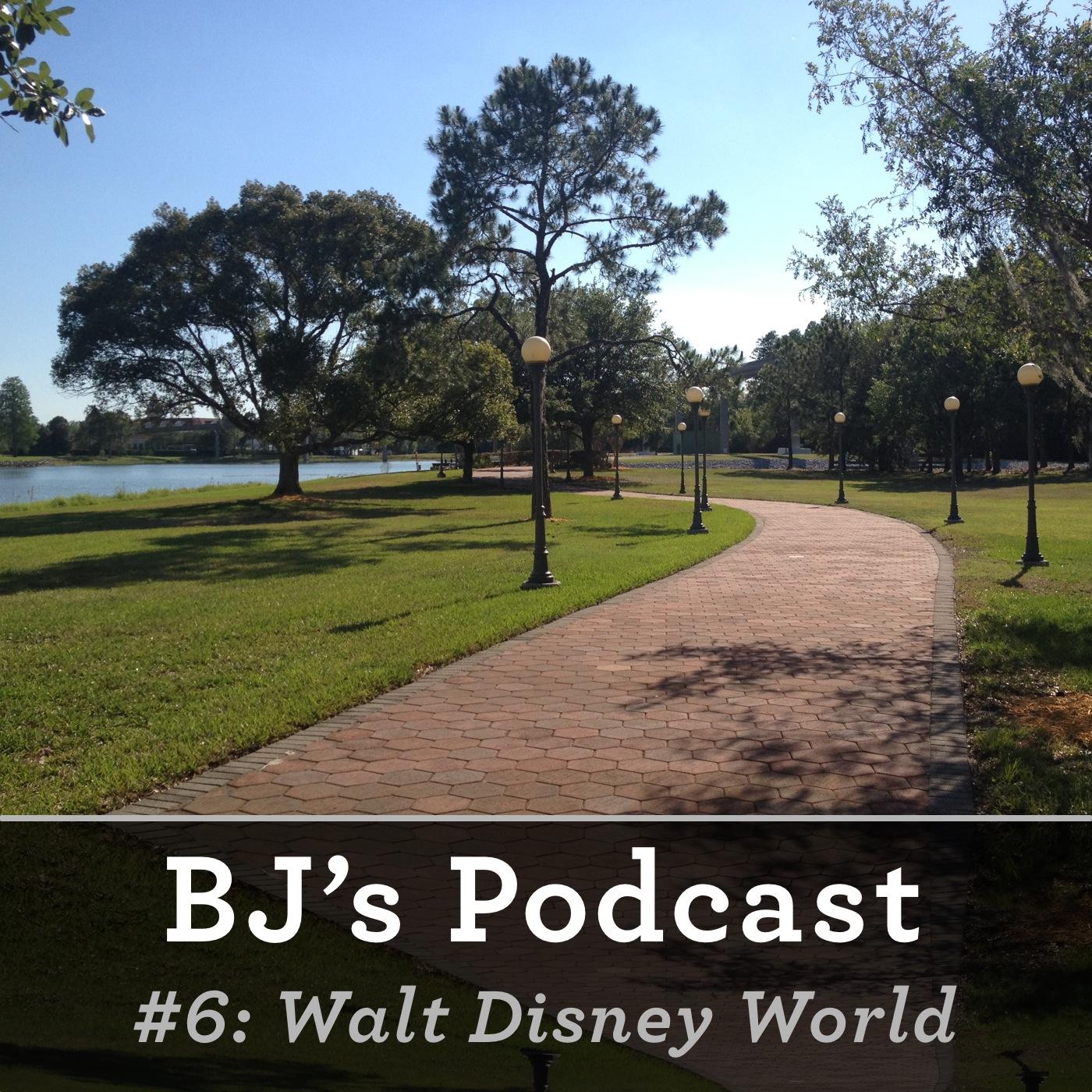 6 - Walt Disney World.jpg
