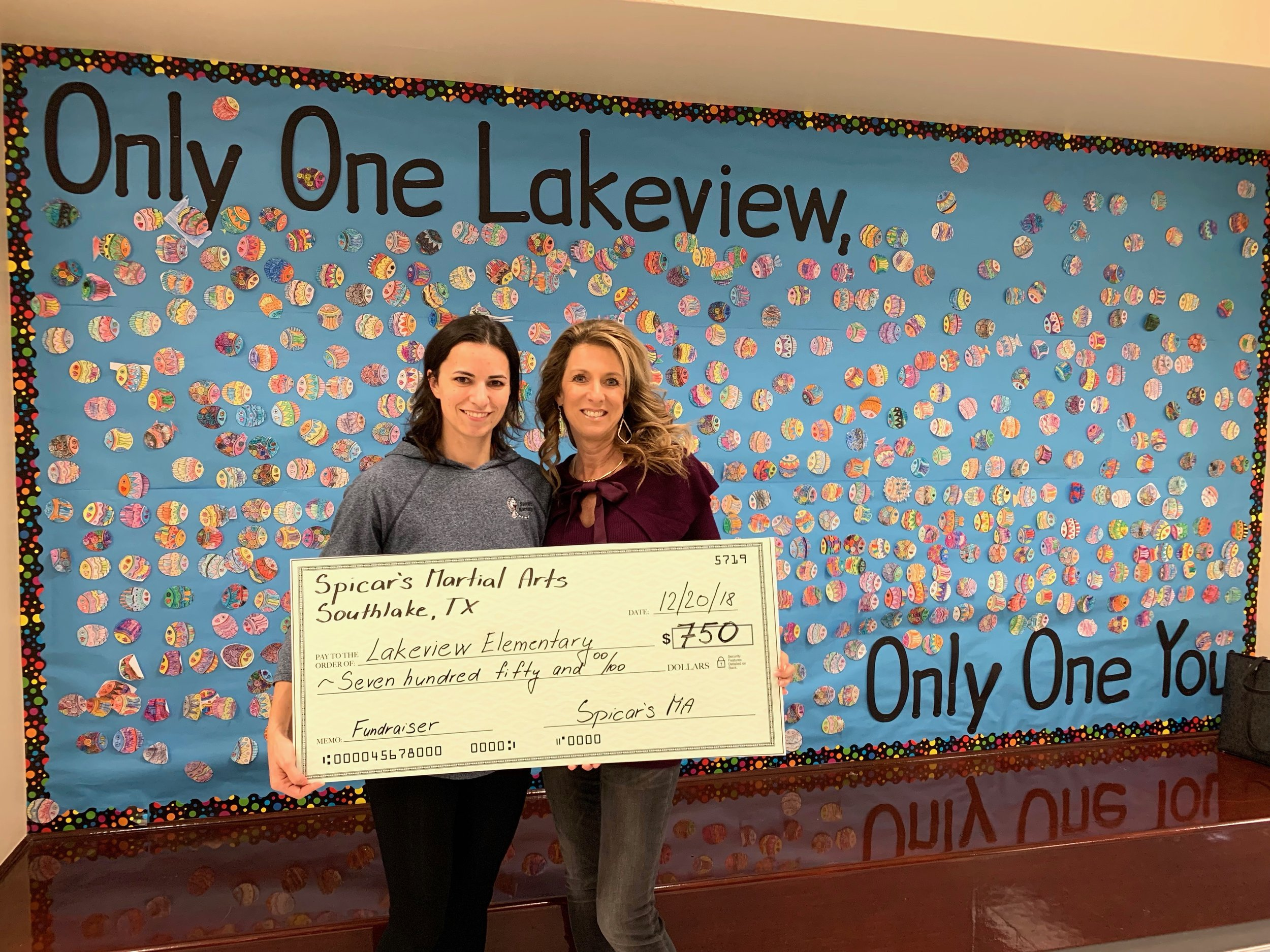 spicar-martial-arts-fundraiser-for-lakeview-elementary-trophy-club.jpeg