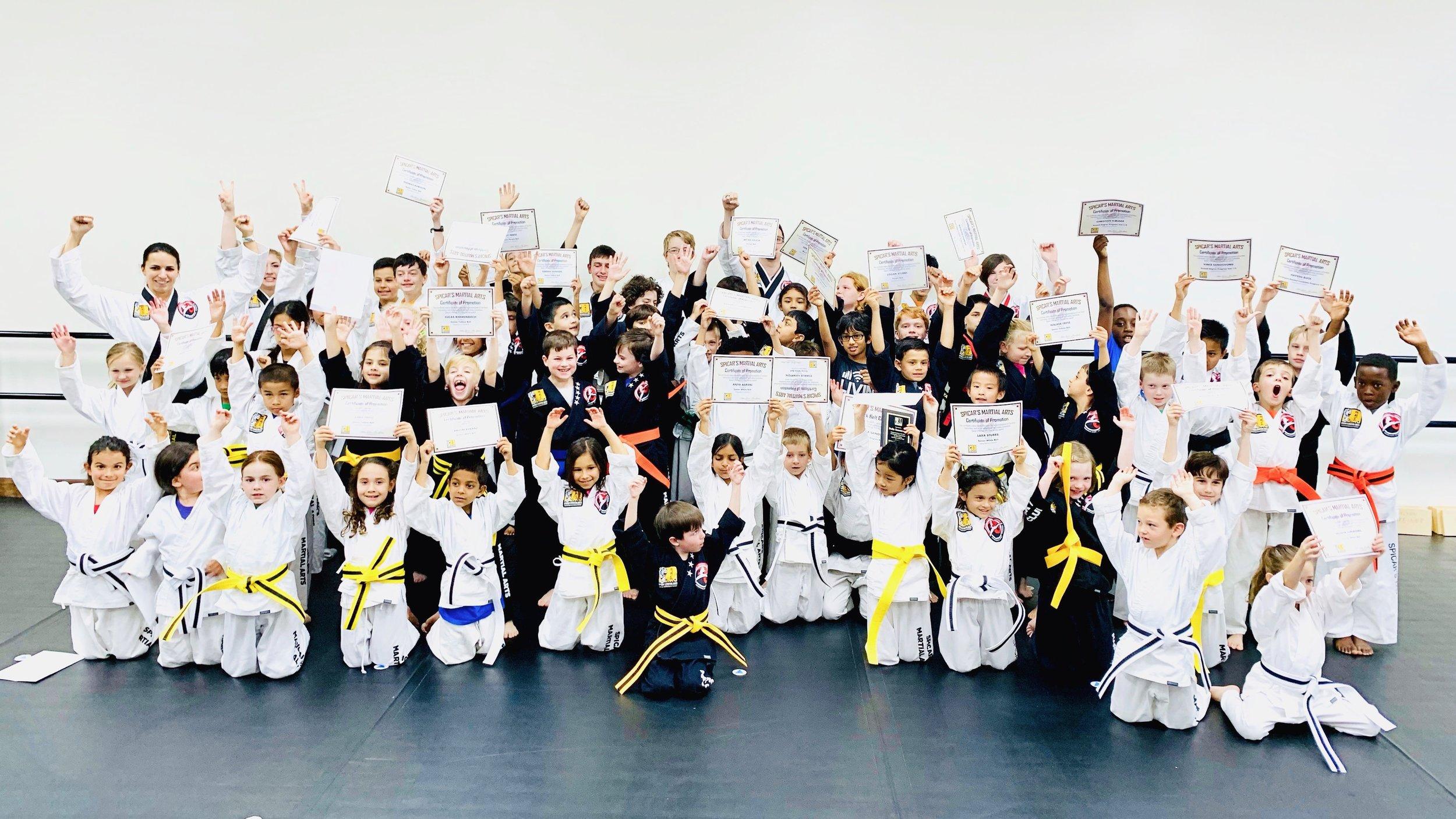 family-martial-arts-southlake-texas.jpeg